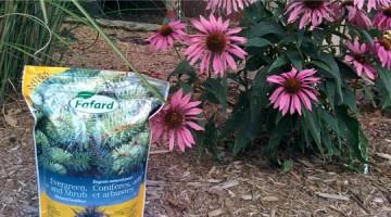 L'importance de l'engrais d'automne