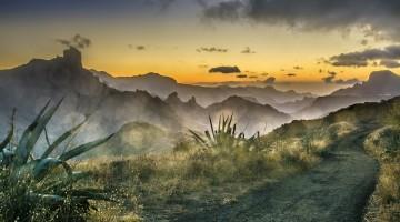 Les îles Canaries, beaucoup plus que des oiseaux à voir!